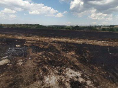 Нов пожар на изхода на Асеновград, огънят вече е потушен