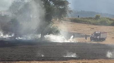 Голям пожар край Асеновград