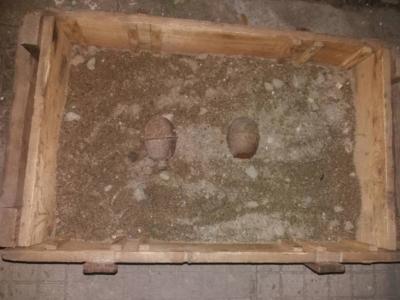Военни унищожиха две ръчни гранати, открити в Плевенско