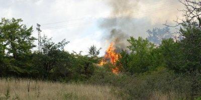 Пожарът край Лесово прехвърли Тунджа, огънят обхвана близо 10 000 декара площ