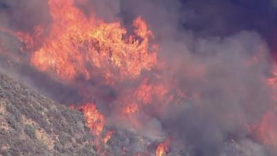 Евакуация в Лос Анджелис заради бързо разрастващ се горски пожар