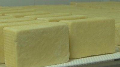 Проверка на БАБХ откри бактерията листерия в кашкавал и ниска масленост в сирене