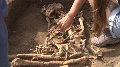 Исполини обитавали земите на Добруджа преди 7000 години