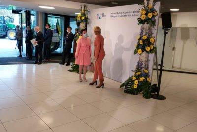 Десислава Танева: Пандемията налага ЕС да засили подкрепата към регионалното производство