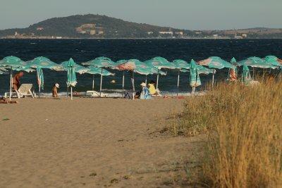 Министерството на туризма: Листа на морски треви са т.нар. замърсители на плажове по морето
