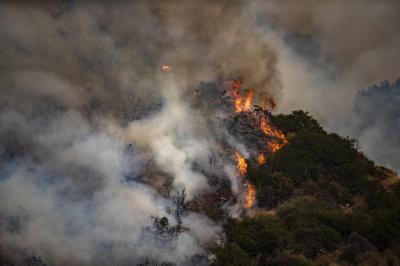Аномалии на времето в САЩ - бури на Източния бряг, пожари на запад