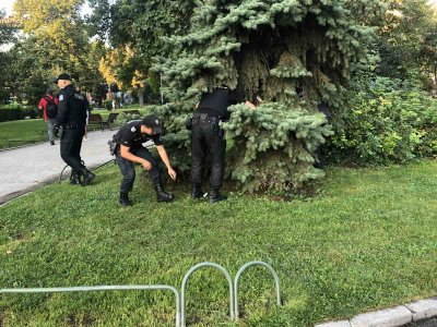 Метални тръби, чували с камъни и стъклени бутилки откриха полицаи в района на протестите