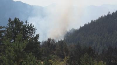Пожарът край Девин е локализиран, но не е потушен