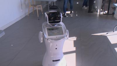 Заради липса на работна ръка фирми търсят помощта на роботи