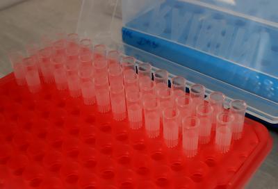1803 случая на коронавирус при 7259 теста