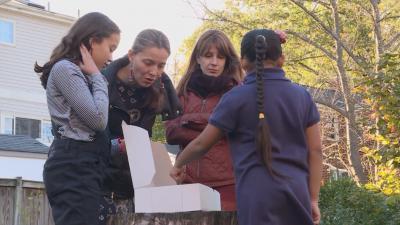 От нашите пратеници в САЩ: Как оцеляват две български семейства по време на коронавирус