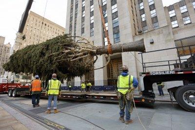 """Поставиха елхата пред """"Рокфелер център"""" в Ню Йорк"""
