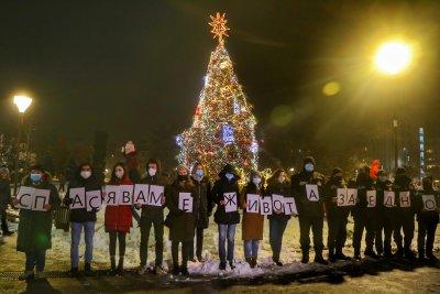 Запалиха светлините на Коледната елха в София (ВИДЕО)