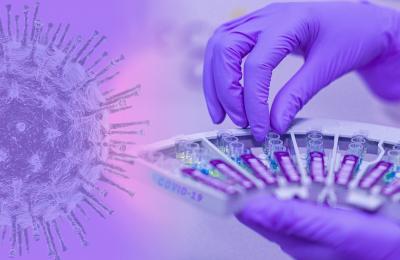 1287 случая на коронавирус при 4407 PCR теста