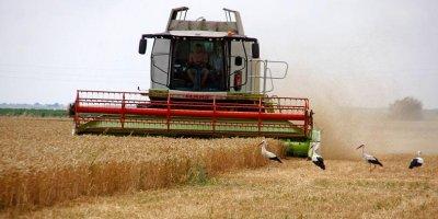 683 млн. лв. са изплатени на над 54 700 земеделски производители