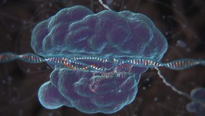 РНК ваксините - пробив на РНК терапиите в медицината