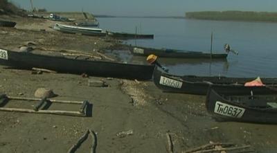 Удължиха забраната за улов на есетрови риби с 5 години