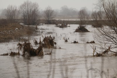 Ситуацията в район Нови Искър е спокойна, няма бедстващи хора