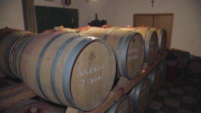 Сервират хърватско вино на някои от събитията около клетвата на Байдън