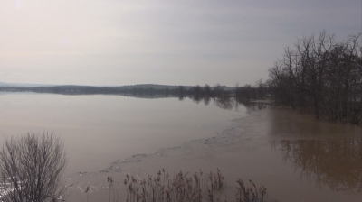 Къщи и ниви в село Димчево са под вода