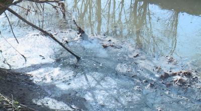 Река Бели Лом край Разград е затлачена. Има ли опасност за питейната вода?