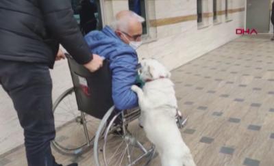 Куче чака стопанина си 6 дни пред болница