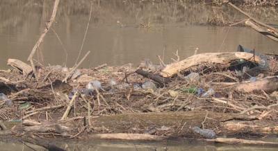 Река Камчия е затлачена и може да наводни села