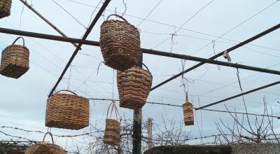Занаят на изчезване: Как се правят плетени кошници
