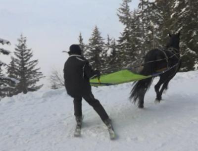 """""""Презареждане"""": Алтернативата на Алпите за зимен спорт в пандемията"""