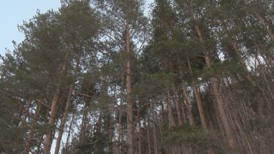 Климатичните промени са нанесли щети за 19 млн. лева в България само за година