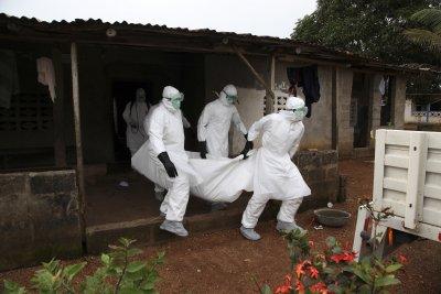 Епидемия от ебола в Гвинея