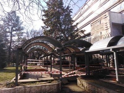 Дърво падна в Градската градина в Благоевград