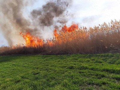 Пожар горя в района на рибарници в Пазарджик