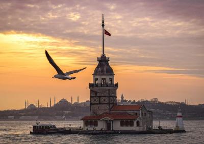 Турция въвежда формуляр за регистрация за пристигащите със самолет