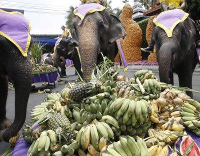 Богати угощения за Деня на слона в Тайланд