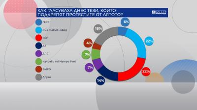 """""""Галъп"""": Как гласуваха тези, които подкрепяха протестите през лятото"""