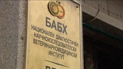 БАБХ е спряла на границата над 1200 тона опасни храни през първото тримесечие