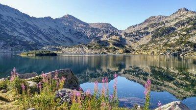 Проучване: Близо 30% от българите са преоткрили страната ни като добро място за почивка