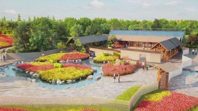 Започва традиционното изложение на цветя в Китай