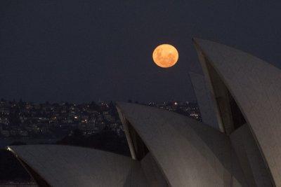 Розова Супер Луна озари небето над Сидни (Снимки)