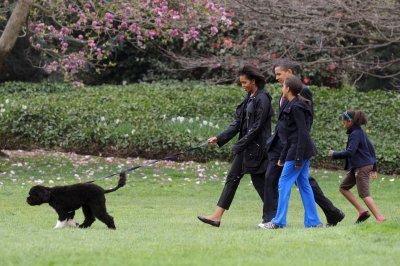 Почина Бо, кучето на Барак Обама и звезда на Белия дом
