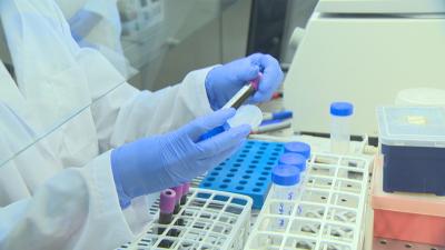 Вината на гените: Защо мъжете боледуват по-често от COVID?
