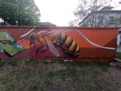 Рисуват 30-метрова стена с графити за Международния ден на пчелите