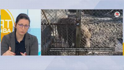 """Фондация """"Четири лапи"""": Лошите условия в зоопарковете не се променят, въпреки сигналите"""