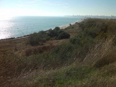 Проверяват плаж Сарафово заради сигнал за багер на пясъка