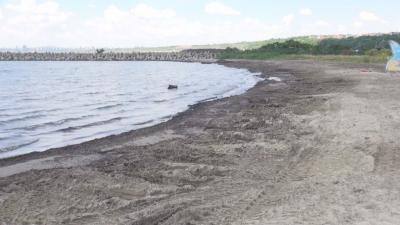 """Плажуващи са недоволни от натрупването на водорасли на плаж """"Сарафово"""""""