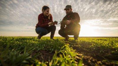 Близо 3 млн. лева получиха младите земеделски стопани за Кампания 2020