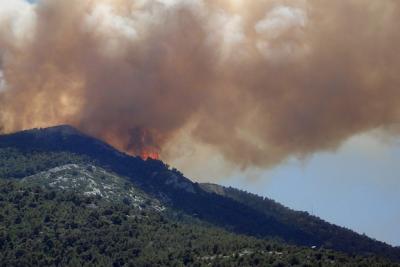 Горски пожар в Мармарис взе жертва