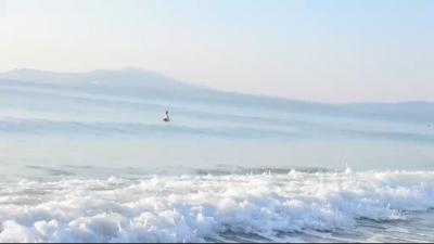 Спасители на плажа съветват: Как да се спасим при мъртво вълнение