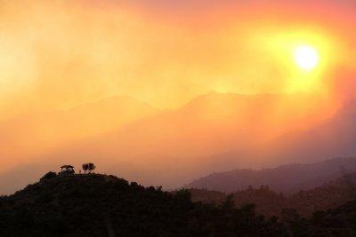 Четири жертви на горския пожар в Кипър